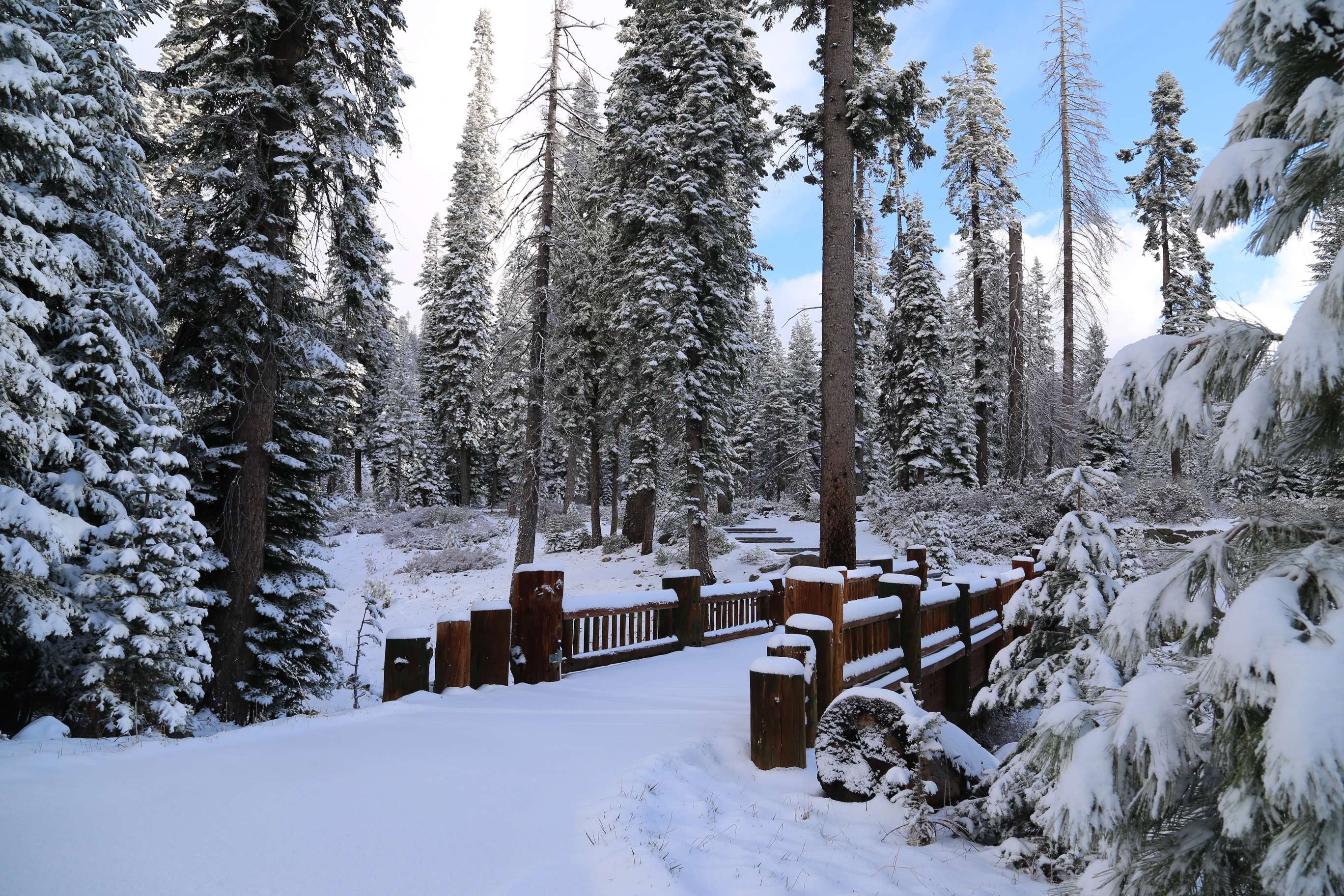 A late season snow in early May 2014 at Kings Canyon made for a magical early morning hike.