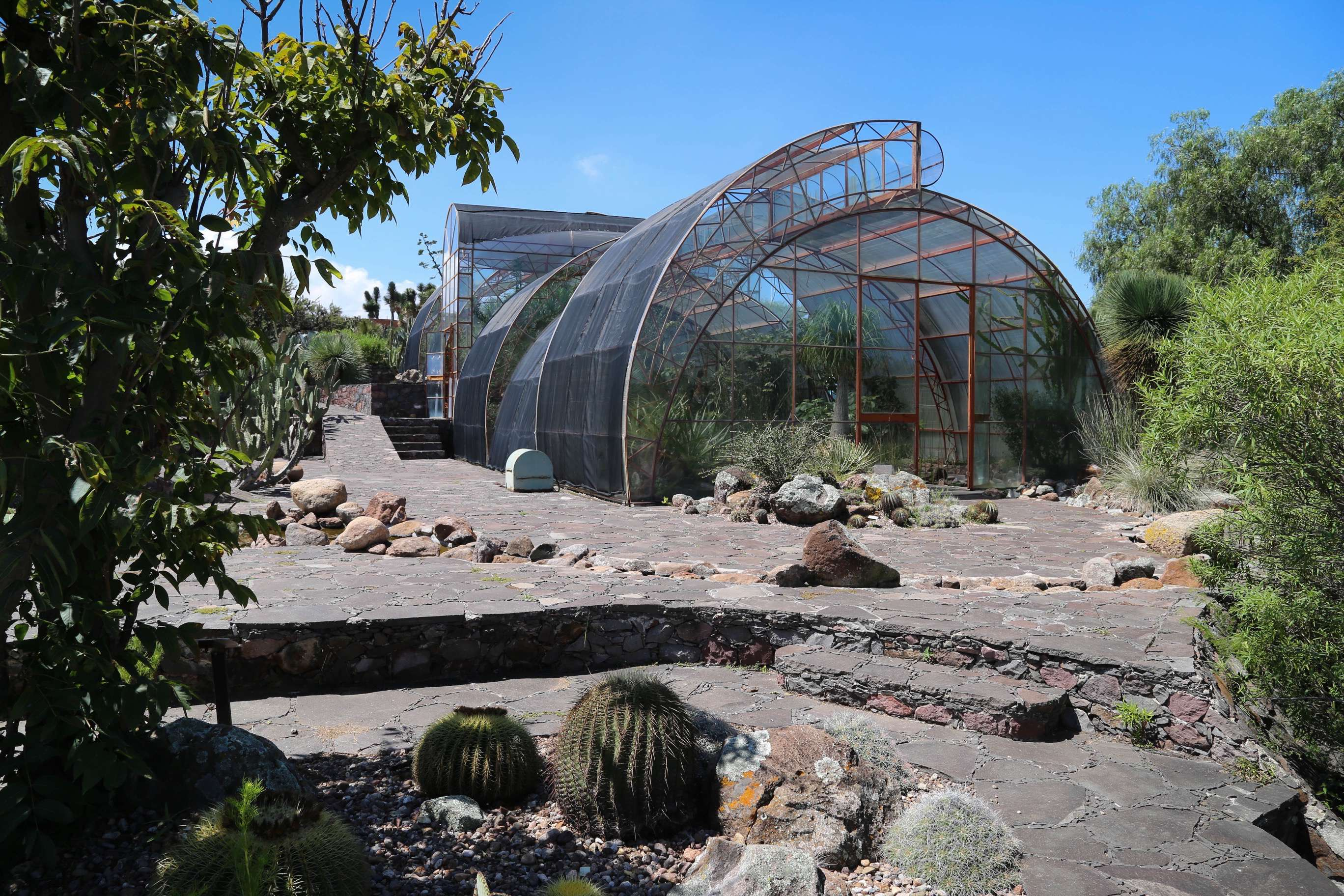 The greenhouse, toward the end of the guided tour, houses an array of plant life.