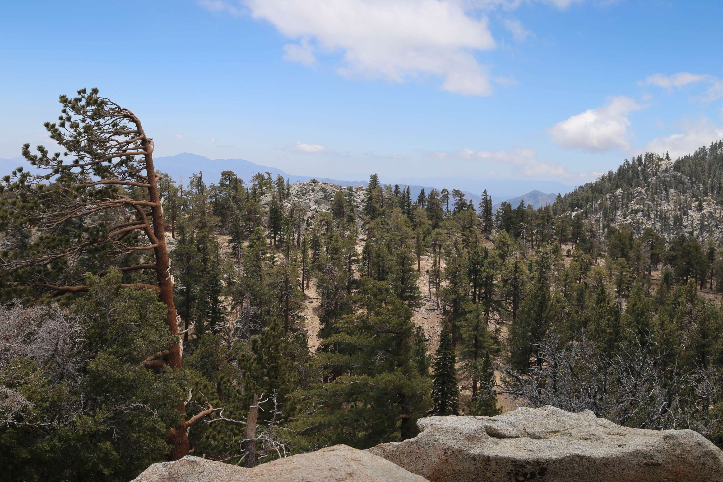 The beauty of Mt. San Jacinto awaits visitors.