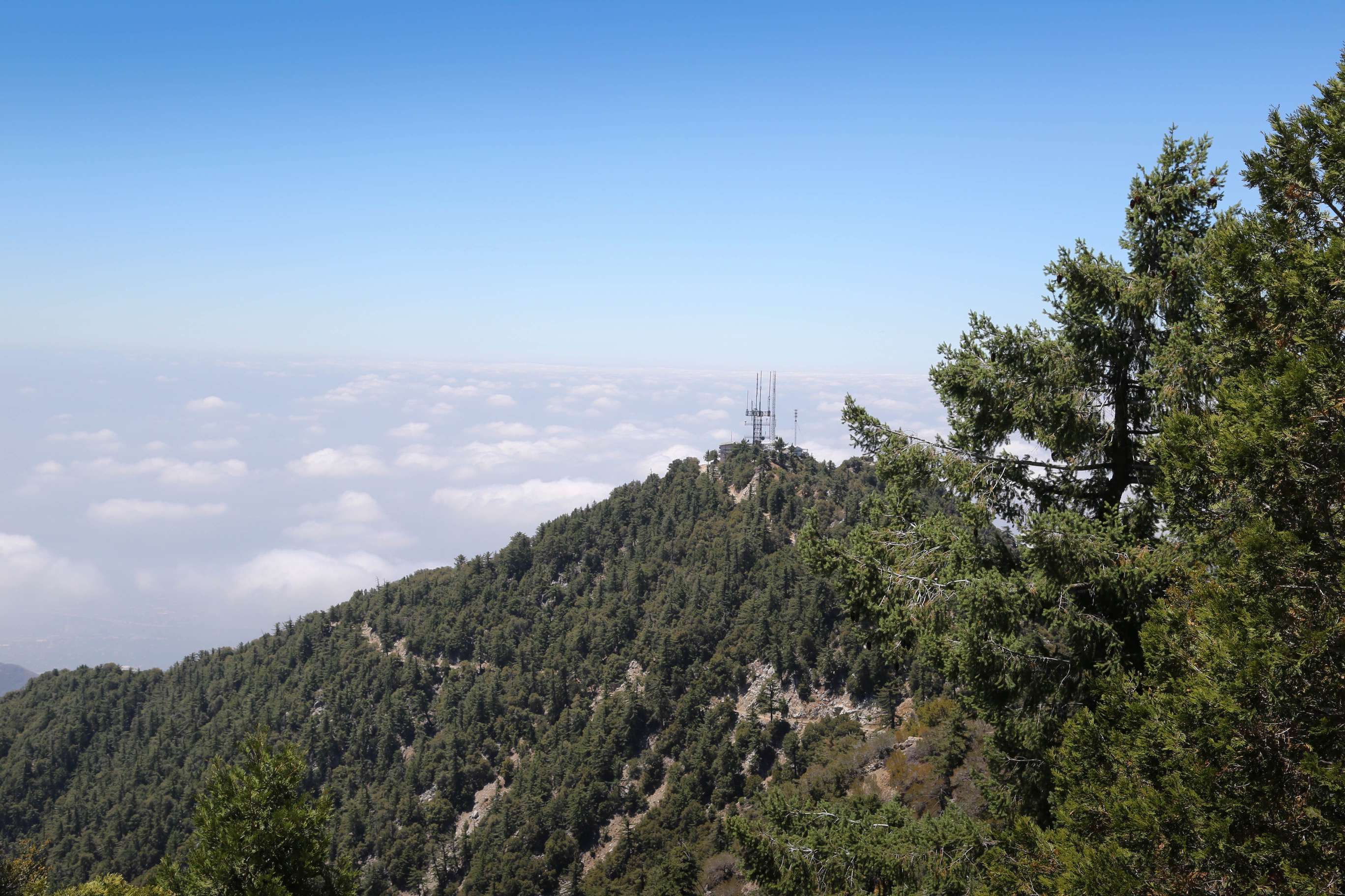 The San Garbriel Valley, and Los Angeles beyond, are obscured by a morning blanket of clouds atop Mt. Wilson.