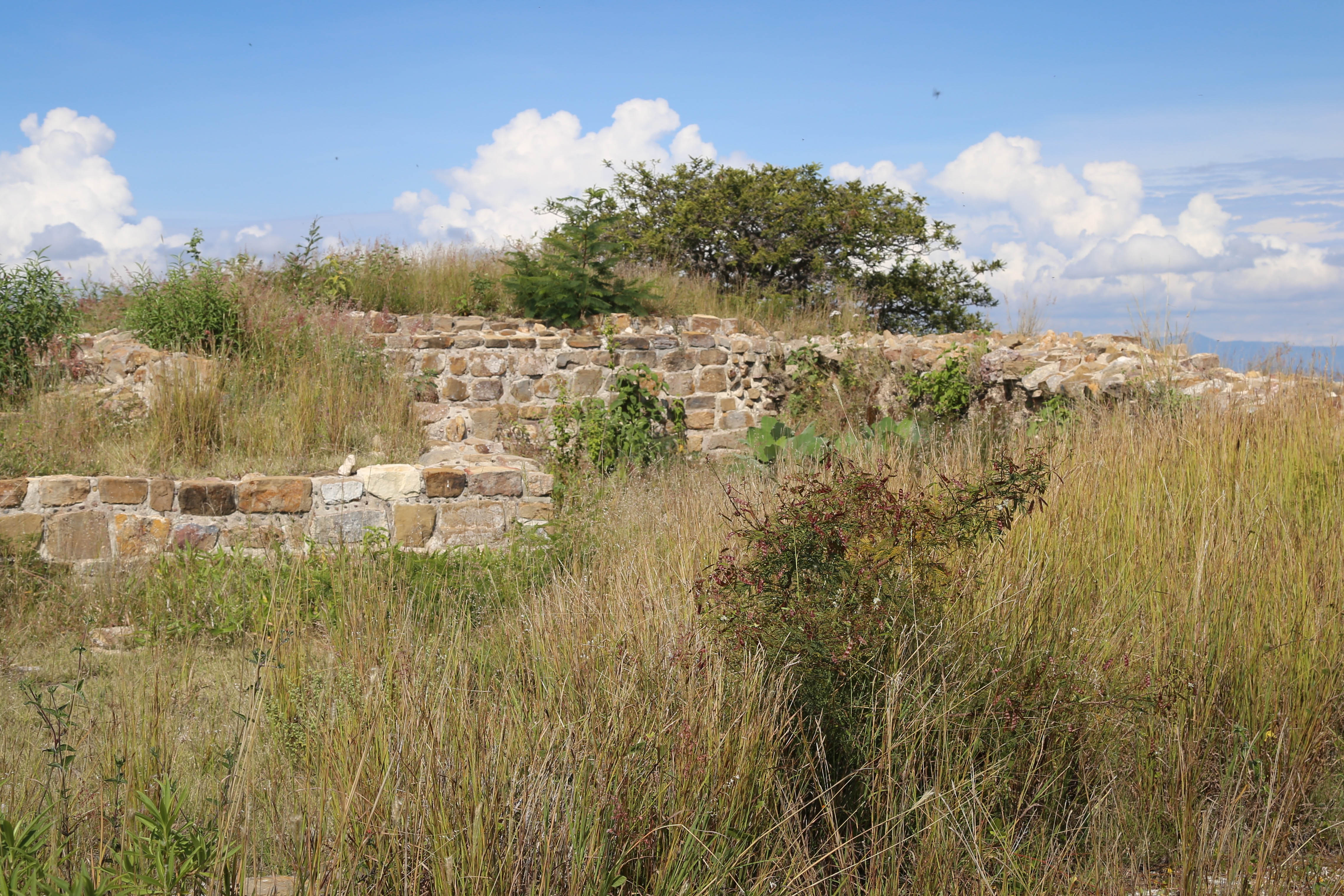 There are places throughout Monte Alban where buildings and pieces of the site are being restored.
