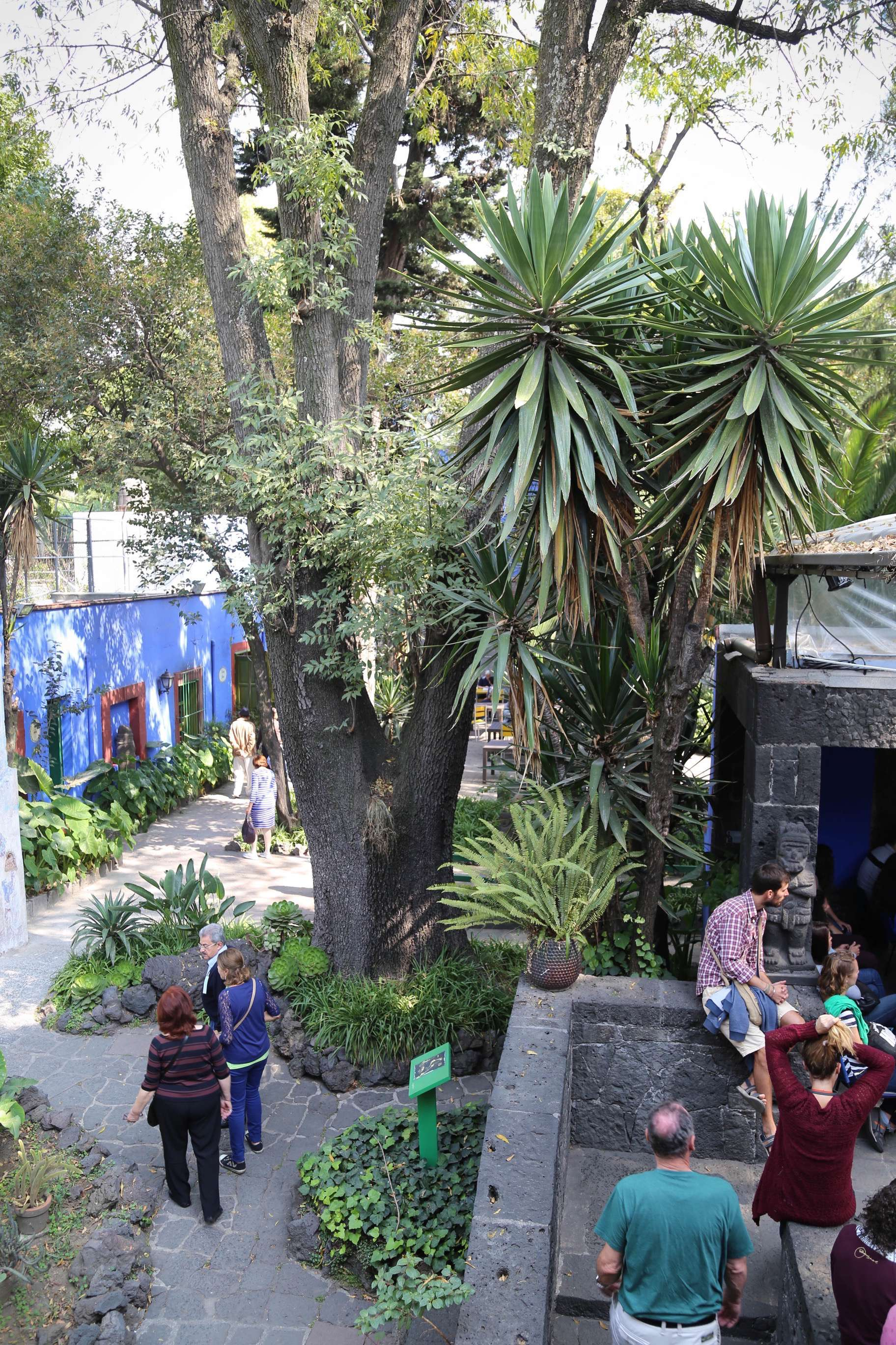 A group of visitors pause on a patio as others stroll the grounds at Casa Azul.