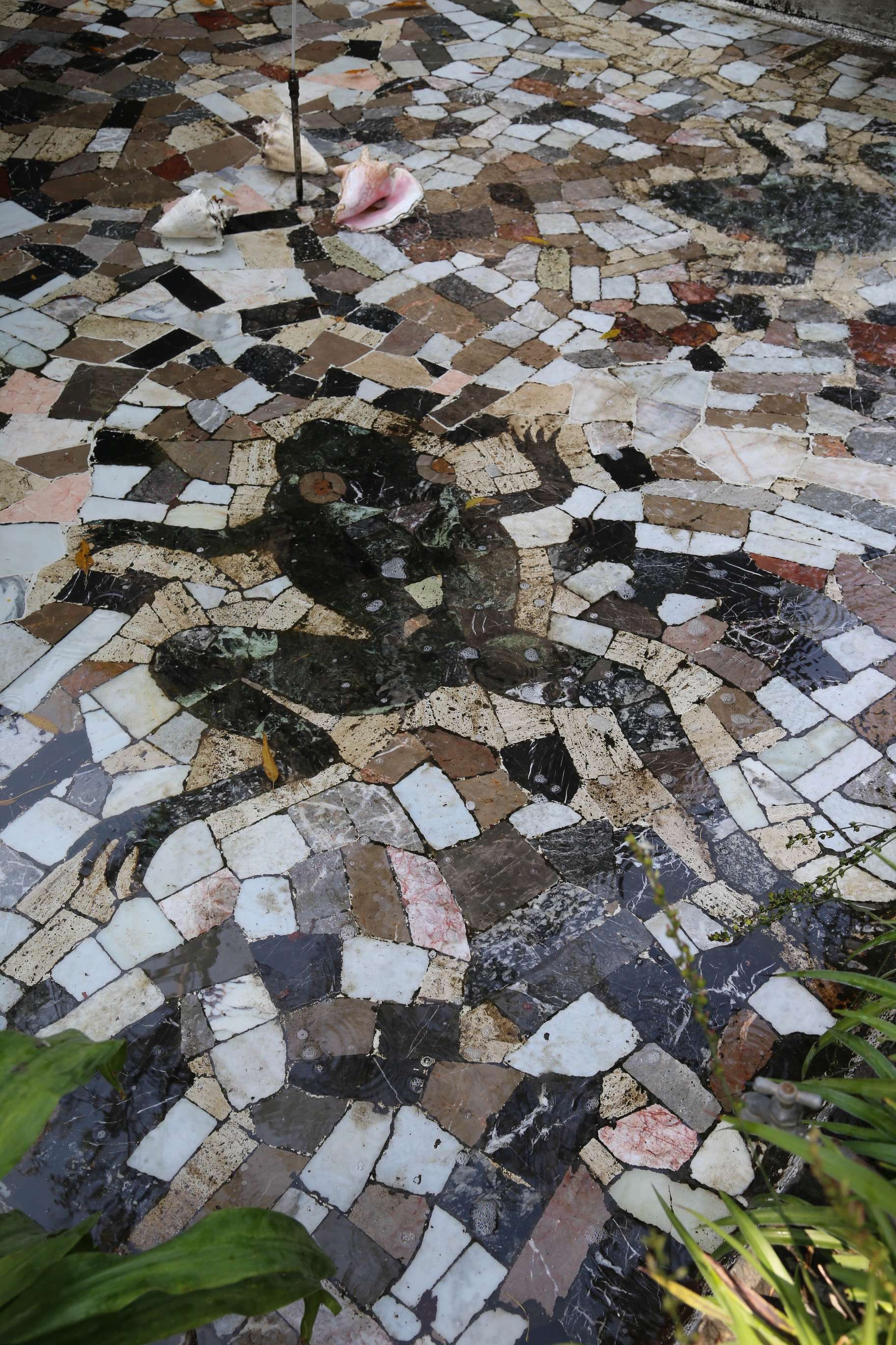 "This tile inlay, in a shallow pool outdoors at Casa Azul, is a reference to Diego Rivera, whose nickname was ""Toad"" in reference to his large eyes and pronounced lips."