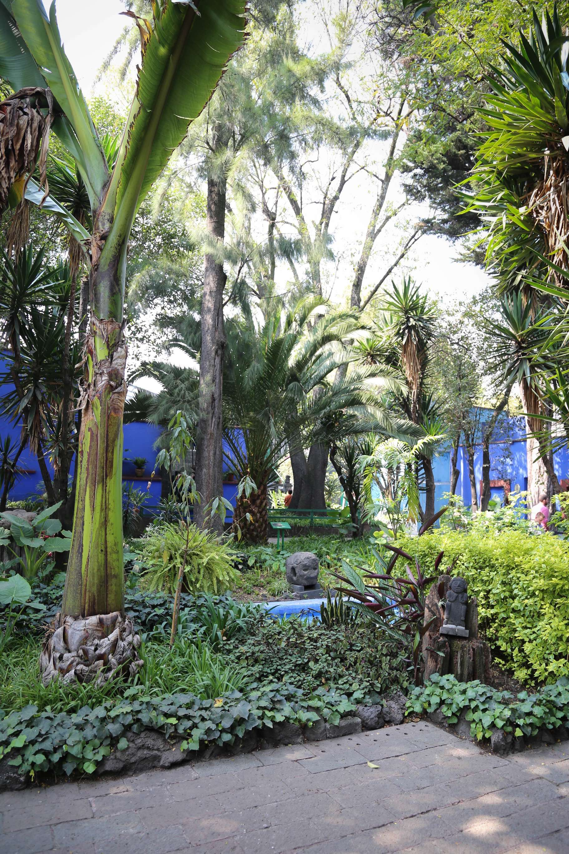 The grounds at Casa Azul are peaceful and inviting.