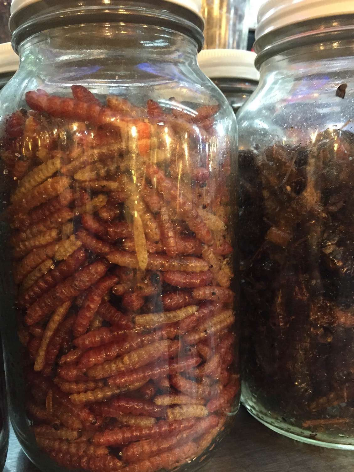 Don't knock it, until you've tried some of the delicious insects. They generally have a nutty flavor.