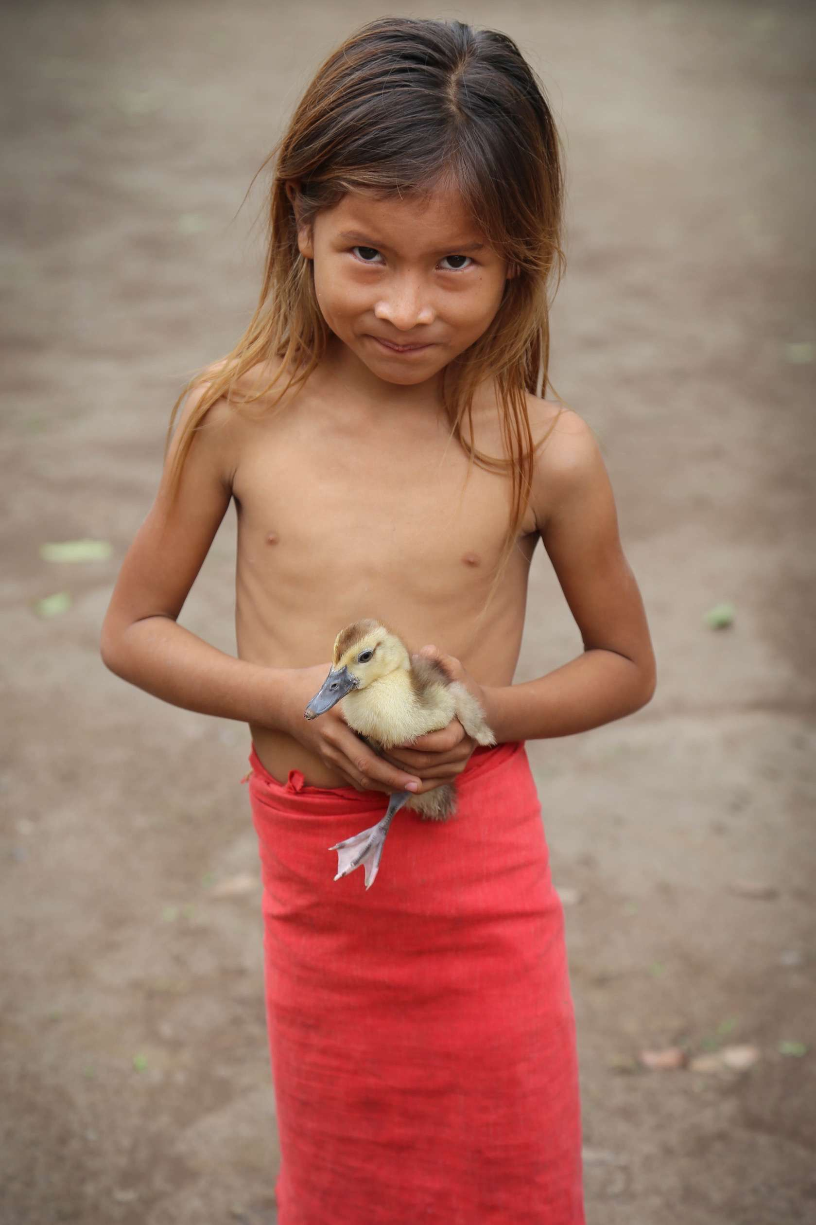 This little girl shyly shows off her baby duckling.