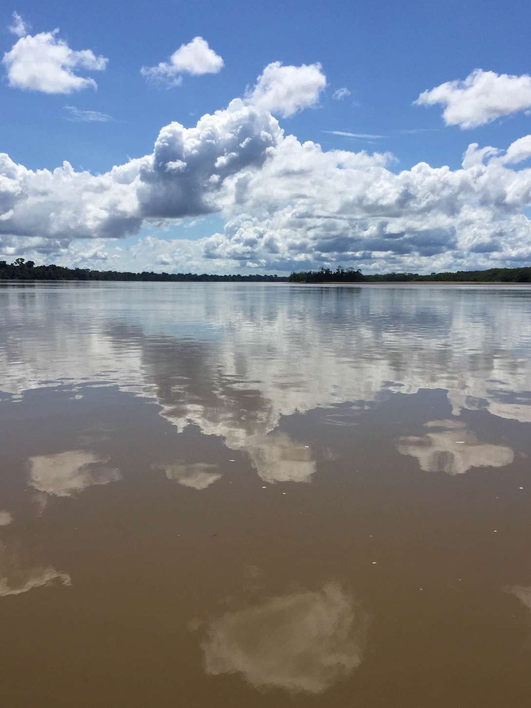 The immensity of the Amazon River must be experienced up close to truly appreciate its majesty.