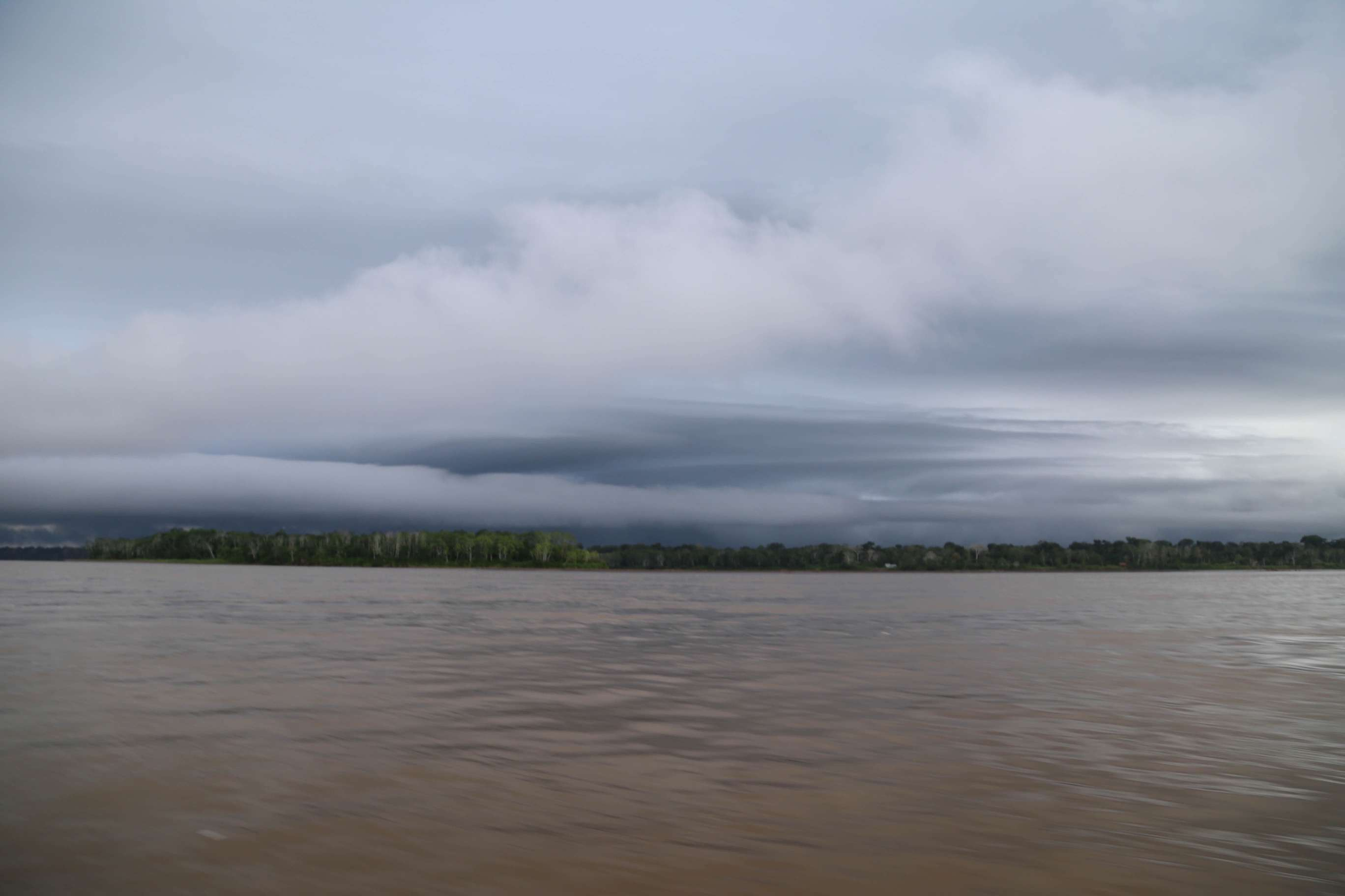 At least 80 inches of rain falls in the Amazon basin and in some areas over 400 inches inundates the land and river.