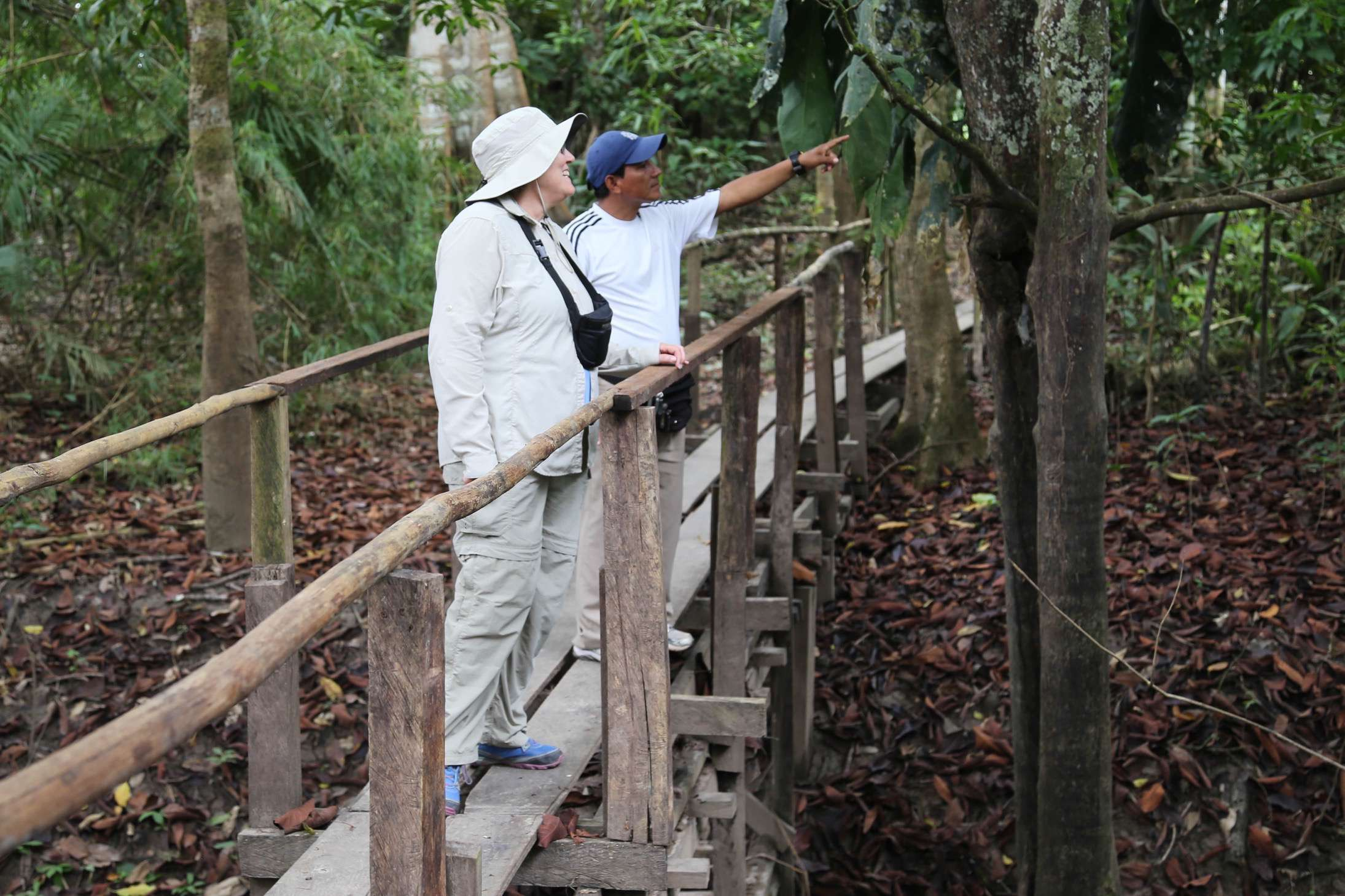 An expert guide points out to a visitor some of the wonders to be seen in the Amazon jungle.