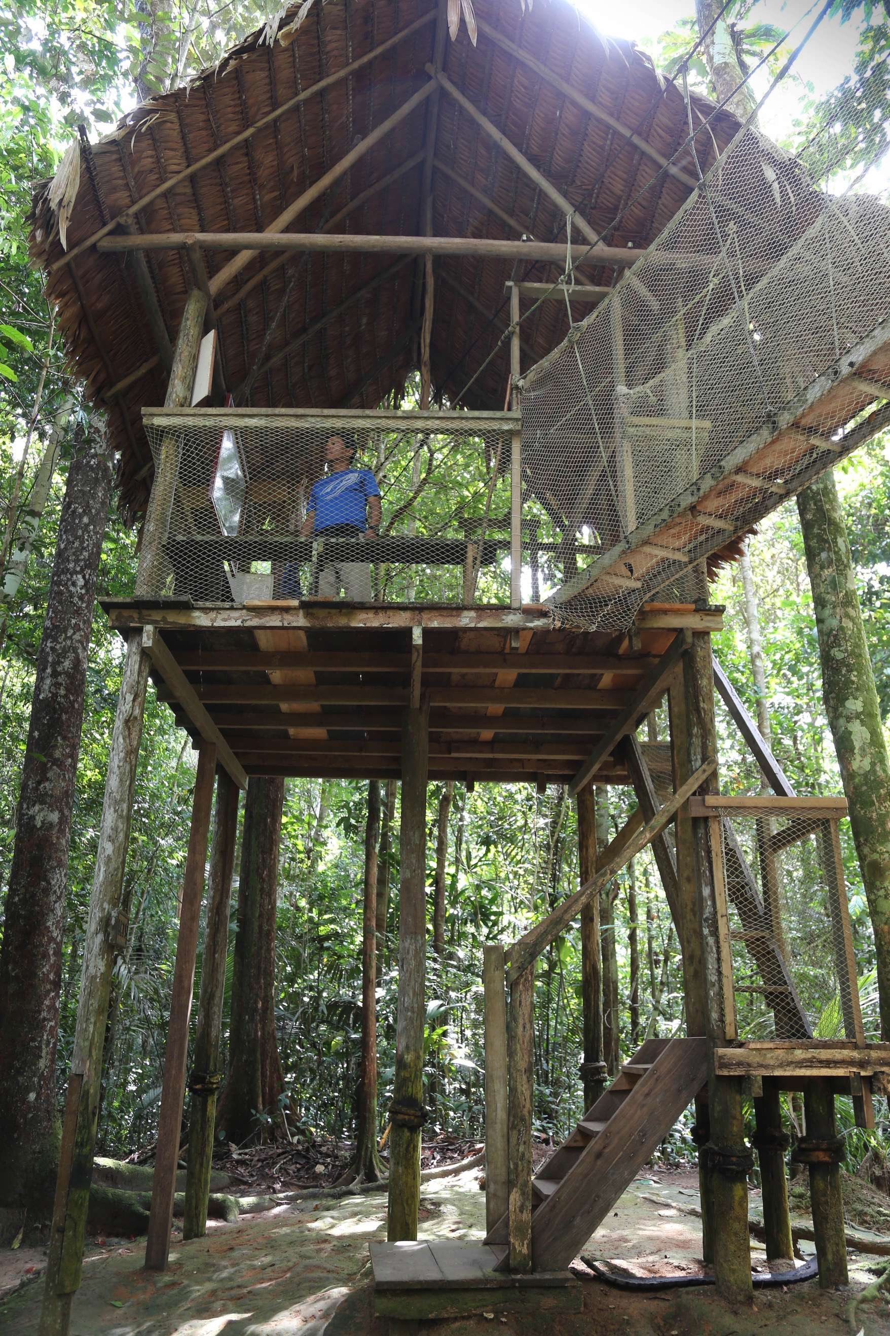 To get to the canopy walkway, you go up these steps. And expert guide waits for a visitor to arrive.