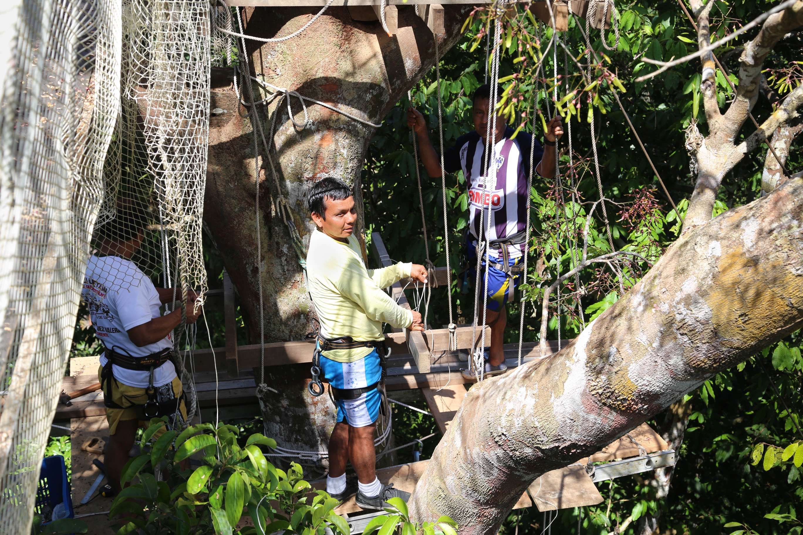 Amazon jungle conditions require that maintenance crews continually check on the walkways to keep them safe.